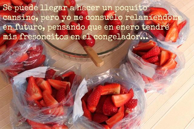 Image00010