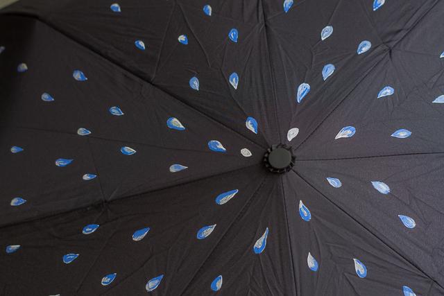 todas las gotas paraguas pintado pangala