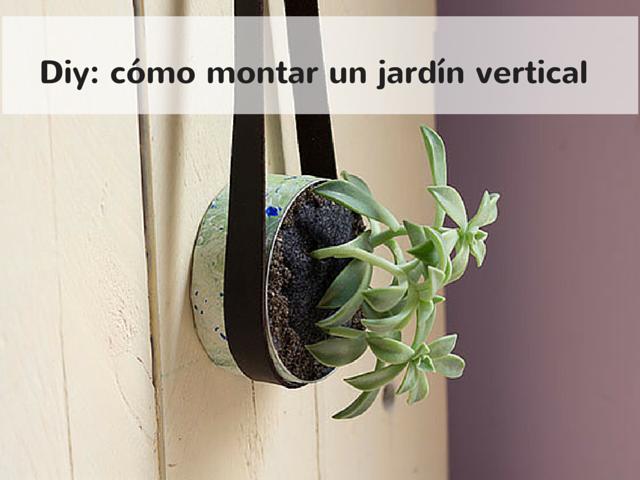 Mis Soluciones Pangala Cmo hacer un jardin vertical en casa